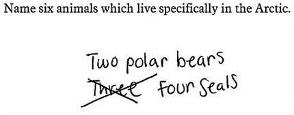 kid's test answer